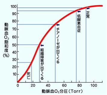圧 分 動脈血 酸素